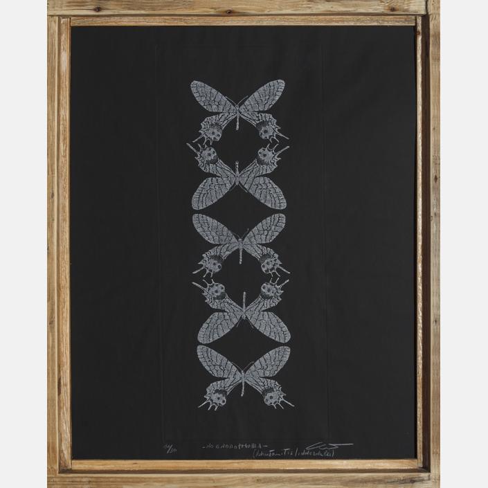No entomophobia – Bhutanitis Lidderdalii