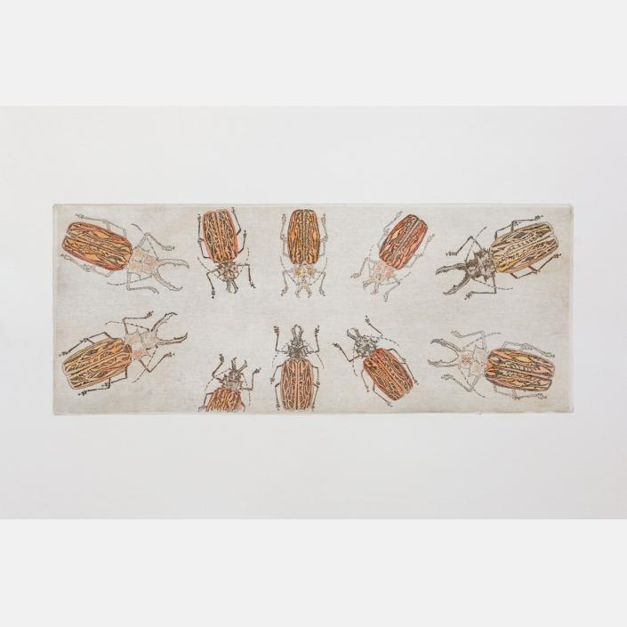 No entomophobia – Macrodontia Cervicornis