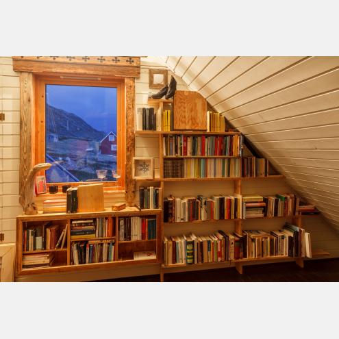 Bookshelf whit view