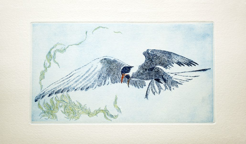 Angrybird2