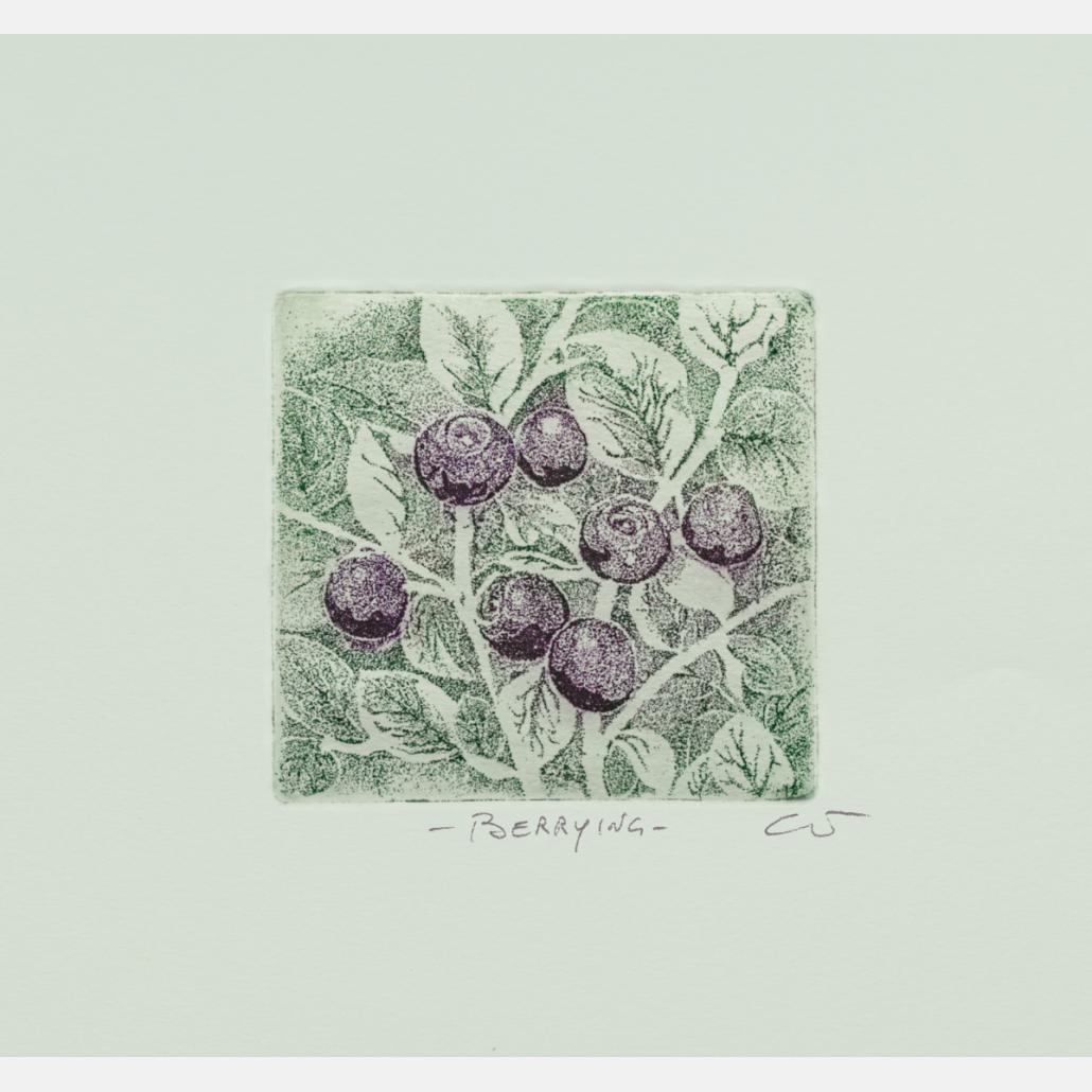 Berrying: Blåbær B
