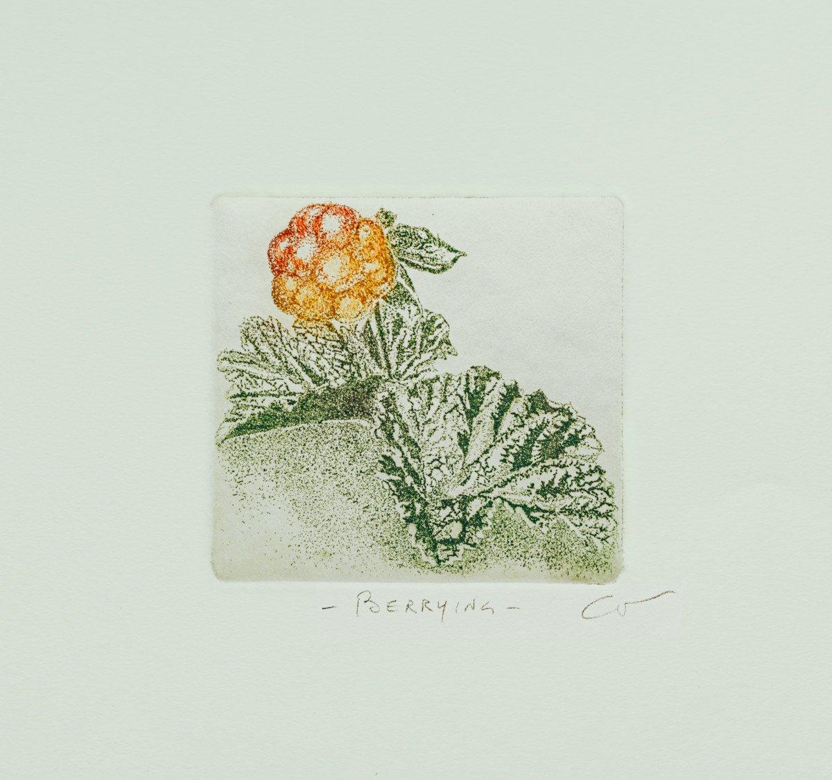 Berrying: Multebær B