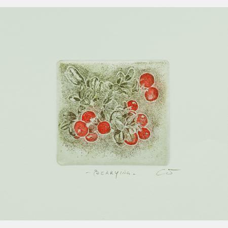 Berrying: TyttebærA