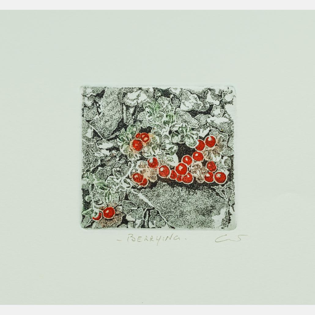 Berrying: Tyttebær