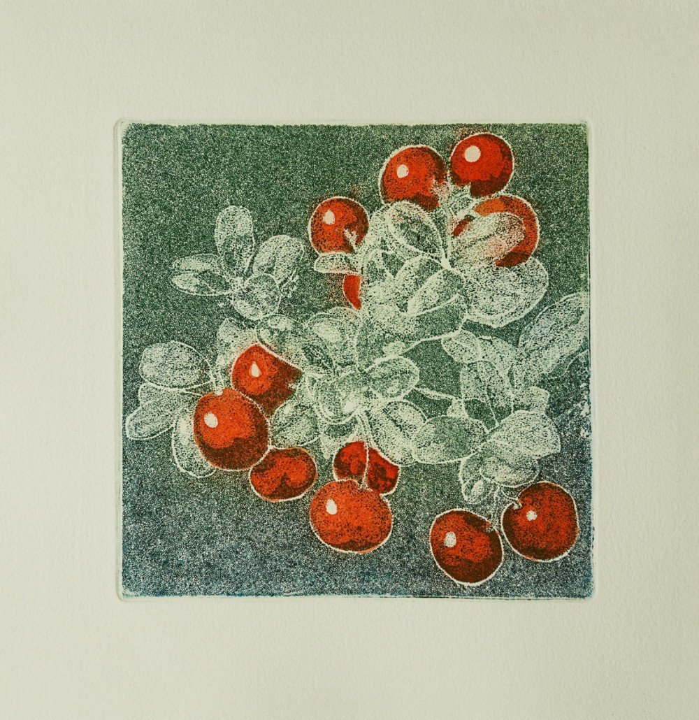 Herbarium - All grass colours – Tyttebær
