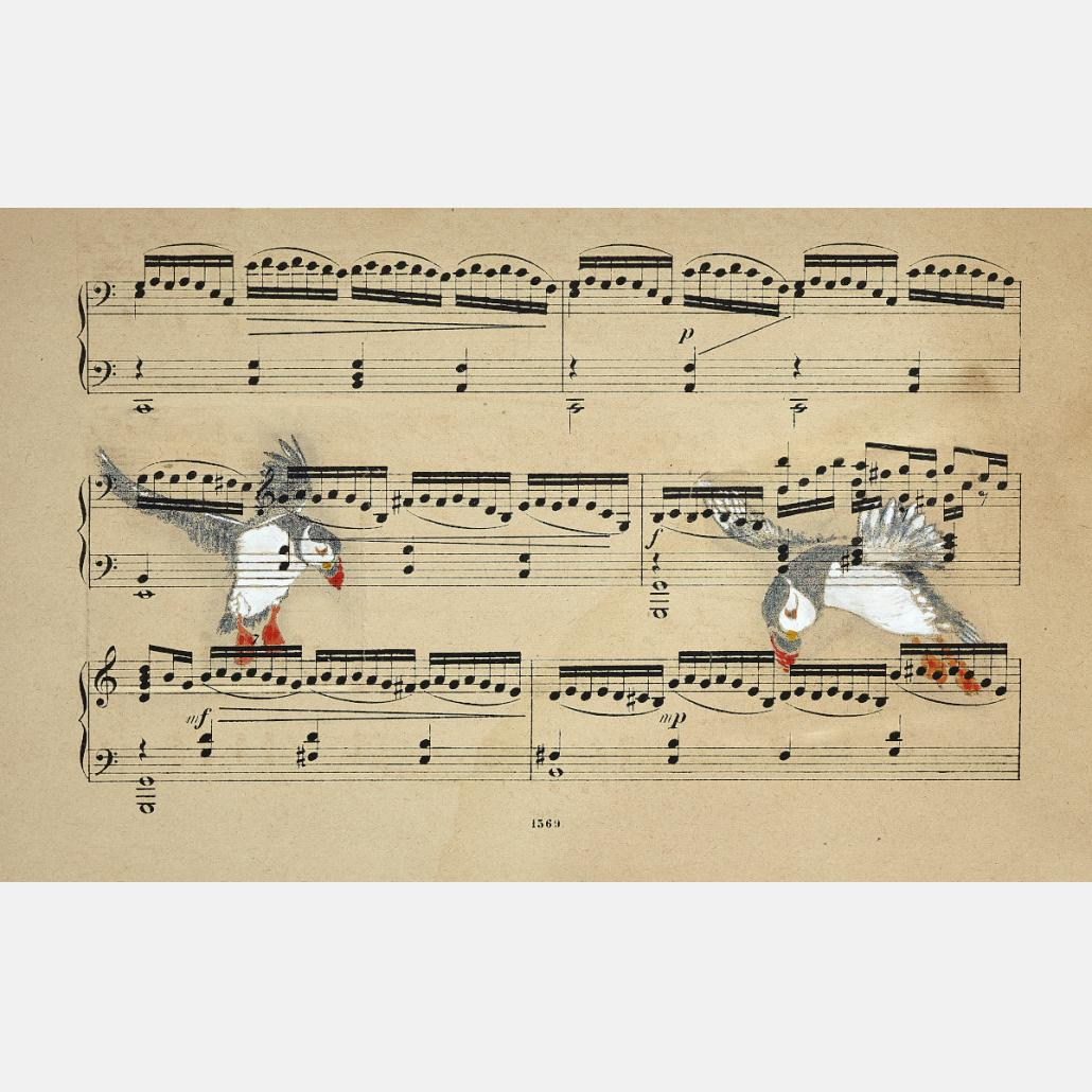 Music of Finnmark