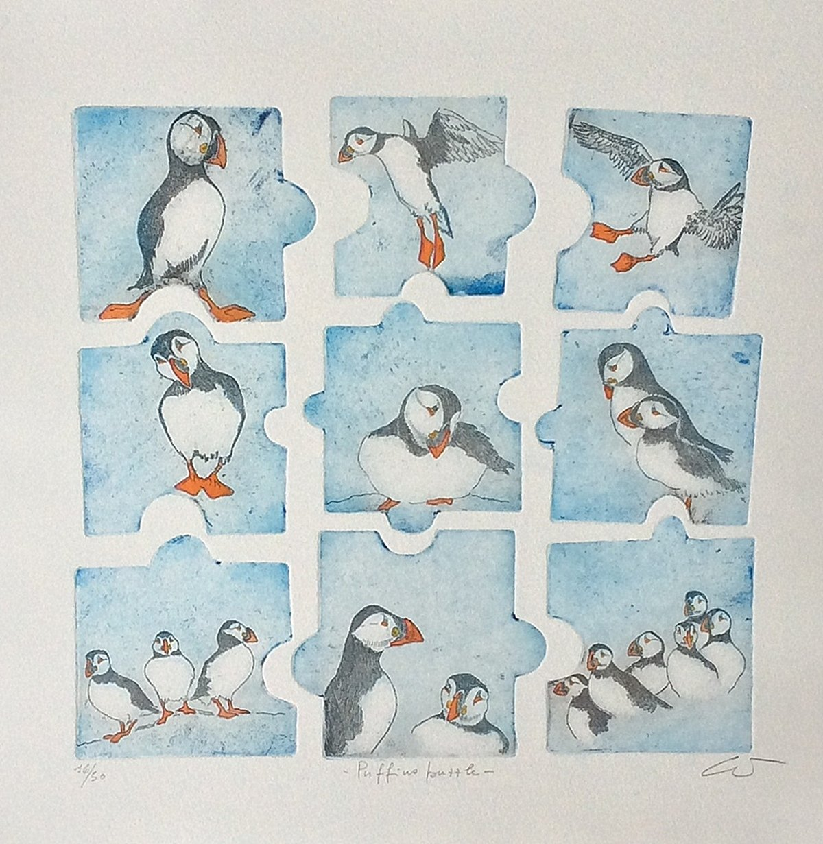 Puffins puzzle A