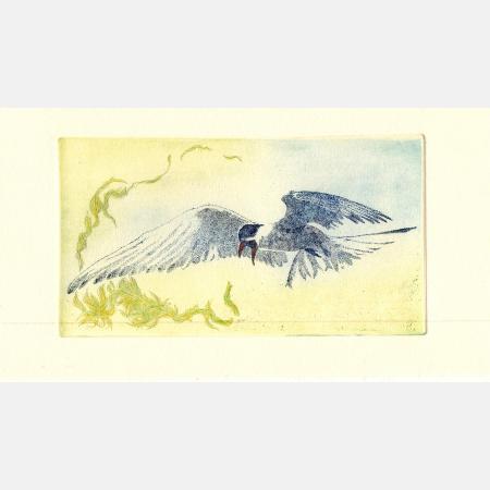 angrybird1